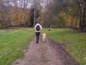 Comprendre son chien pour mieux vivre avec